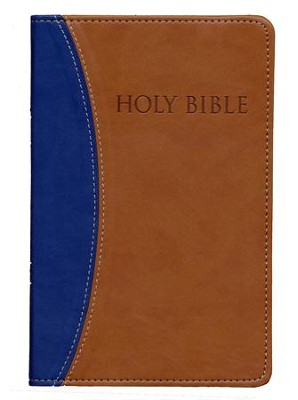 KJVer (Easy Reader) Personal Size Bible, Ultrasoft Blue/Tan, Thumb Indexed  -