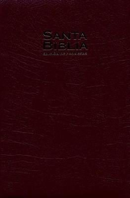 Biblia de promesas rvr 1960 ed regalo piel imit vino rvr 1960 biblia de promesas rvr 1960 ed regalo piel imit vino rvr 1960 fandeluxe Gallery