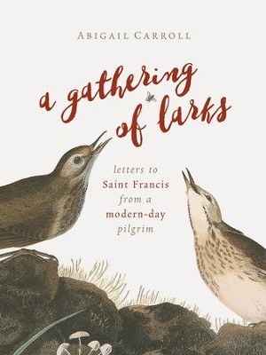 A Gathering of Larks: Letters to Saint Francis from a Modern-Day Pilgrim - eBook  -     By: Abigail Carroll