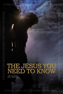 The Jesus You Need to Know: A Character Study of the Christ - eBook  -     By: Joe Durso