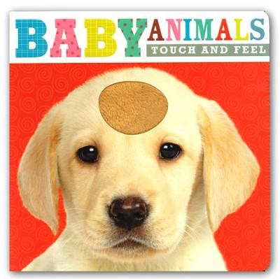 Touch and Feel Baby Animals  -