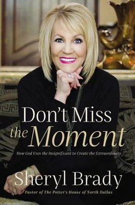 Don't Miss the Moment: How God Uses the Insignificant to Create the Extraordinary - eBook  -     By: Sheryl Brady