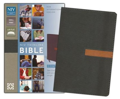 NIV Thinline Compact Bible--soft leather-look, graphite/sienna  -