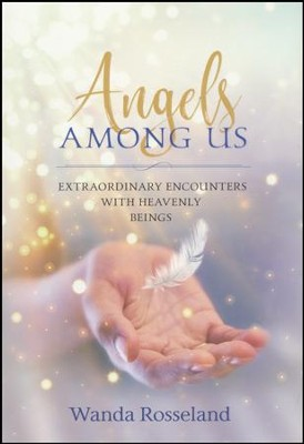 Angels Among Us: Extraordinary Encounters with Heavenly Beings  -     By: Wanda Rosseland