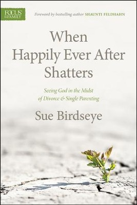 When Happily Ever After Shatters: Seeing God in the Midst of Divorce & Single Parenting  -     By: Susan Birdseye