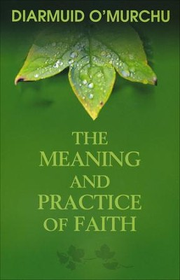 The Meaning and Practice of Faith: Supporting Those on the Way  -     By: Diarmuid O'Murchu