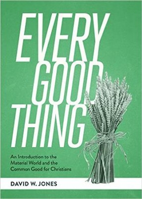 Every Good Thing: An Introduction of the Material World and the common Good for Christians  -     By: David W. Jones