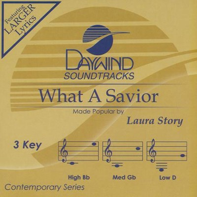 What A Savior Accompaniment, CD  -     By: Laura Story