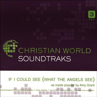 If I Could See (What the Angels See) Acc, CD  -     By: Amy Grant