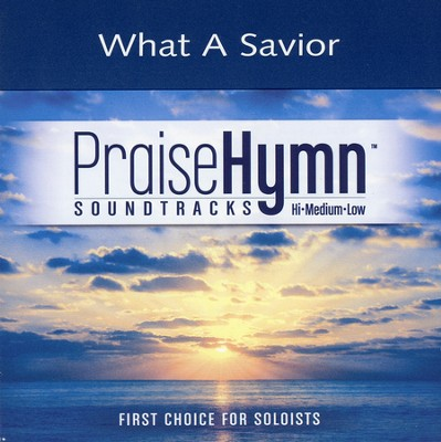 What A Savior, Accompaniment CD   -     By: Laura Story