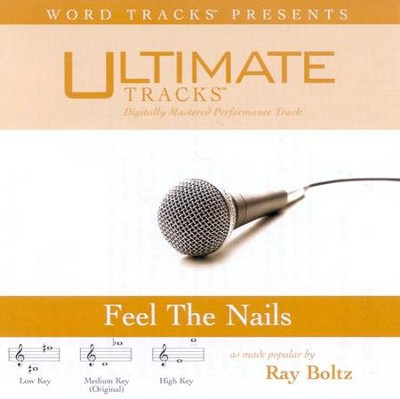 Feel The Nails - Medium key performance track w/o background vocals  [Music Download] -     By: Ray Boltz