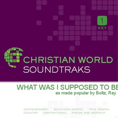 What Was I Supposed To Be  [Music Download] -     By: Ray Boltz