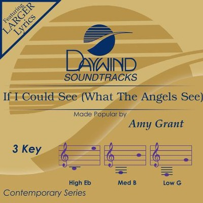 If I Could See What The Angels See  [Music Download] -     By: Amy Grant