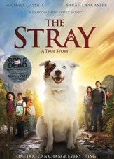 The Stray, DVD