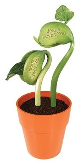 Jesus Loves You, Message Bean Terrarium