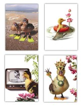 Just Ducky Cards, Box of 12