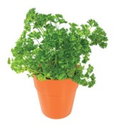 Tasty Herb Capsules, Parsley
