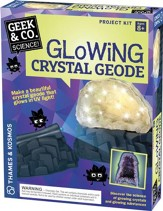 Glowing Crystal Geode Kit