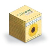 Ecofriendly Plant Cube, Indoor Grow Kit, Sunflower