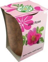Bamboo Fiber Jar, Indoor/Outdoor Grow Kit, Wild Rose