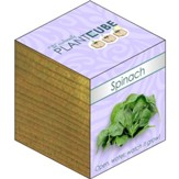 Ecofriendly Plant Cube, Indoor Grow  Kit, Spinach