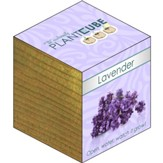 Ecofriendly Plant Cube, Indoor Grow Kit, Lavender