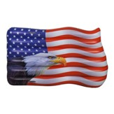 USA Flag with Bald Eagle Float