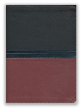 NIV MacArthur Study Bible--soft leather-look, auburn/black
