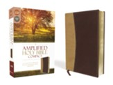 Amplified Compact Holy Bible--soft leather-look, camel/burgundy