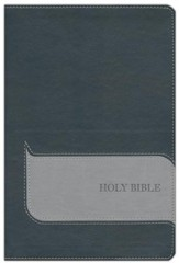 NIV Understand the Faith Study Bible--soft leather-look, black/charcoal (indexed)
