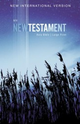 NIV Large-Print Outreach New Testament--softcover, blue wheat