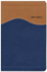 NIV Gift Bible--imitation leather, tan/blue (indexed) - Slightly Imperfect