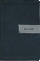 NIV Gift Bible--imitation leather, black/gray (indexed)