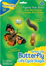 Butterfly Life Cycle Stages Figurines