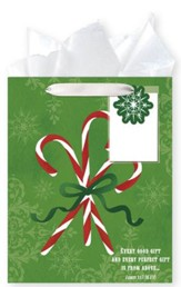 Candy Canes, Gift Bag with Tissue, James 1:17, Medium