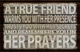 A True Friend Warms You With Her Presence Plaque