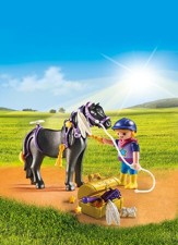 Playmobil Groomer With Star Pony Accessory
