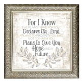 For I Know the Plans I Have For You Framed Decor
