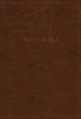 KJV, Know The Word Study Bible, Imitation Leather, Black and Brown, Indexed