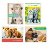 Puppies and Kittens Get Well Cards, Box of 12