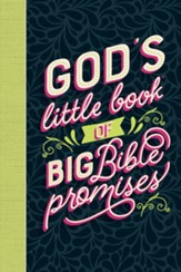 God's Little Book of Big Bible Promises - eBook