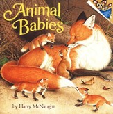 Animal Babies - eBook
