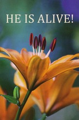 He Is Alive! (KJV), Pack of 25 Tracts
