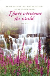 I have Overcome the World (John 16:33) Bulletins, 100