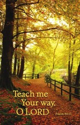 Teach Me Your Way (Psalm 86:11)