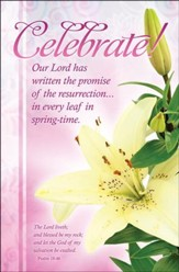 Celebrate! (Psalm 18:46) Bulletins, 100
