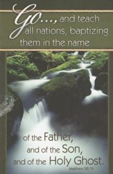 Baptizing Them in the Name (Matthew 28:19) Bulletins, 100