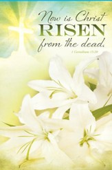Risen from the Dead (1 Corinthians 15:20) Bulletins, 100