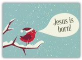 Christmas Joy, Box of 12 Christmas Cards (NIV)