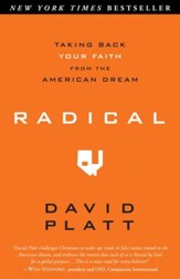 Radical: Taking Back Your Faith from the American Dream - eBook